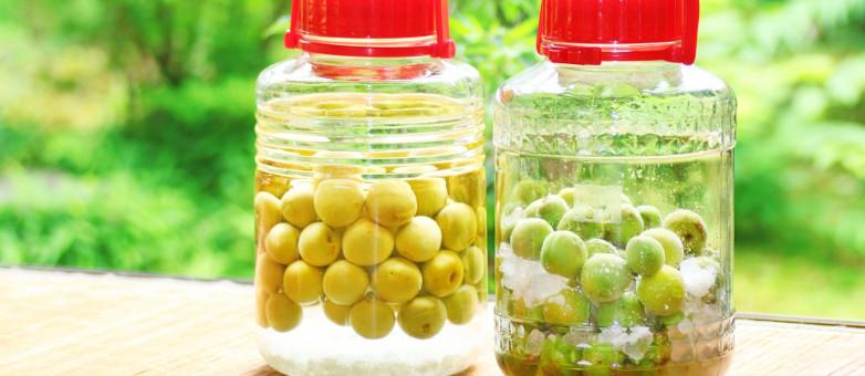 【 梅シロップ / 梅ジュース 】梅酒を作るついでに家族用にもう一本。