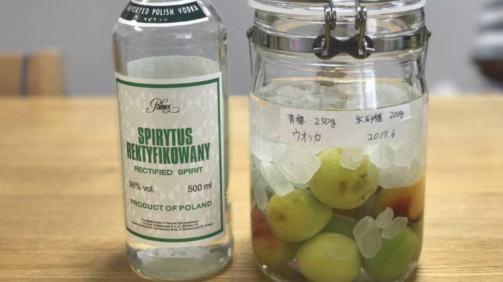 ウォッカ 梅酒 【 スピリタス × 南高梅 × 氷砂糖 】 2017年の梅仕事