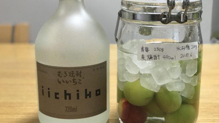 麦焼酎 梅酒 【 いいちこ × 南高梅 × 氷砂糖 】 2017年の梅仕事