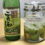 蕎麦焼酎 梅酒 【 雲海 × 南高梅 × 氷砂糖 】 2017年の梅仕事