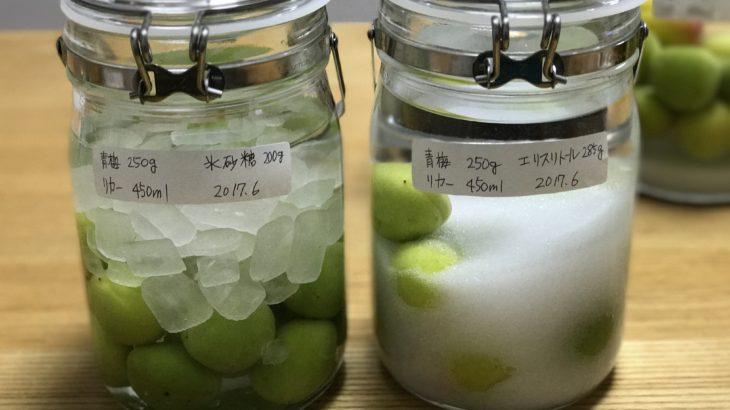 ダイエットシュガー 梅酒 【 ホワイトリカー × 南高梅 × エリスリトール 】 2017年の梅仕事