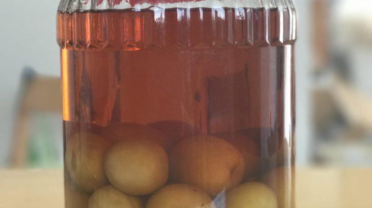 ボンベイサファイア梅酒のレシピ 【凄い手作り梅酒ランキング #2】