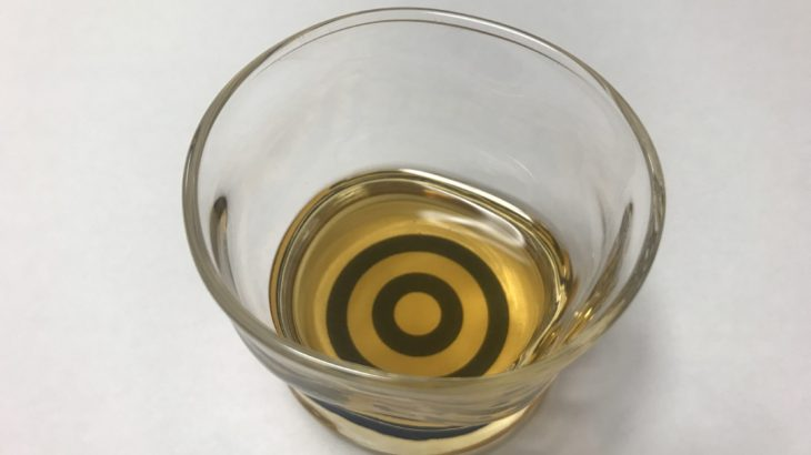 ブランデー 梅酒 【 V.O × 南高梅 × 氷砂糖 】 23ヶ月目