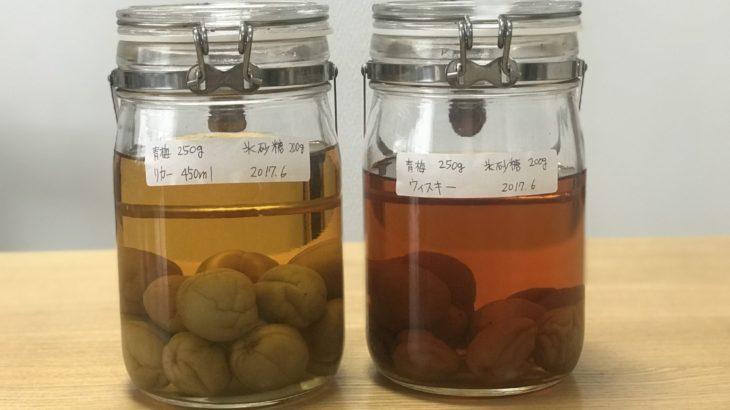 ウイスキー 梅酒 【 ブラックニッカ クリア × 南高梅 × 氷砂糖 】 23ヶ月目