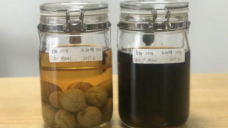 カルーア 梅酒 【 カルーア × 南高梅 × 氷砂糖 】 22ヶ月目