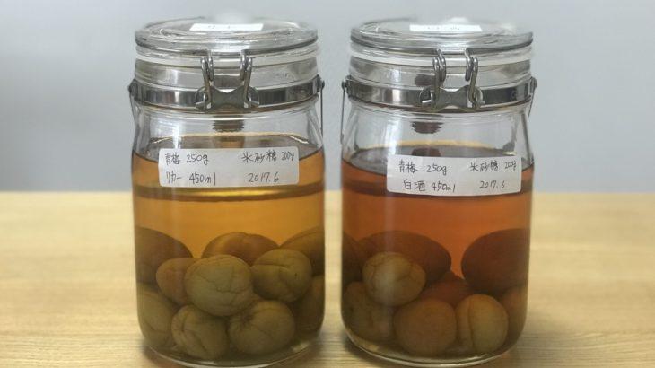 白酒 梅酒 【 紅星 二鍋頭酒 (アルコードシュ) × 南高梅 × 氷砂糖 】 23ヶ月目
