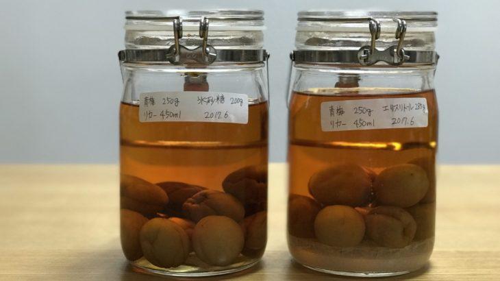 ダイエットシュガー梅酒 【 ホワイトリカー × 南高梅 × エリスリトール 】 24ヶ月目
