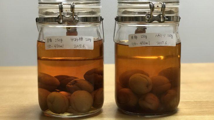 蜂蜜梅酒 【 ホワイトリカー × 南高梅 × はちみつ 】 24ヶ月目