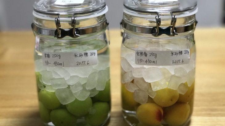 手作り梅酒の梅は「青梅」と黄色い「完熟梅」のどちらが良いのか?