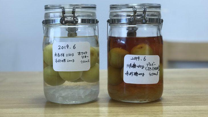 ブランデー 梅酒 【 JPシェネ × 南高梅 × 氷砂糖 】 2019年の梅仕事