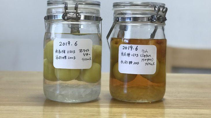 ラム 梅酒 【 キャプテン モルガン スパイスト ゴールド × 南高梅 × 氷砂糖 】 2019年の梅仕事