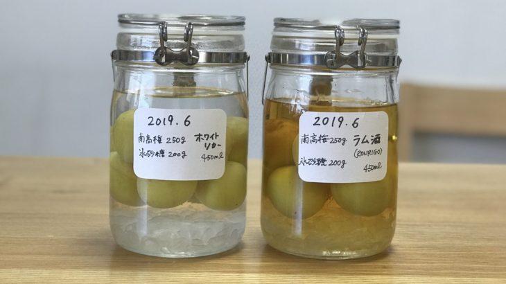 ラム 梅酒 【 ロンリコ ゴールド × 南高梅 × 氷砂糖 】 2019年の梅仕事