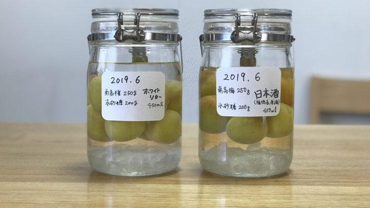 日本酒 梅酒 【福徳長 原酒 × 南高梅 × 氷砂糖 】 2019年の梅仕事