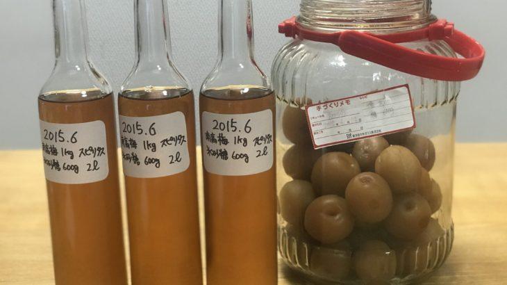 スピリタス梅酒【 スピリタス × 南高梅 × 氷砂糖 】 49ヶ月目