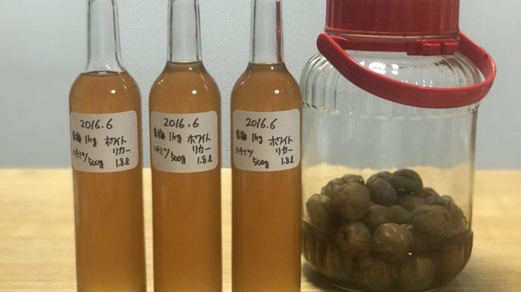 ハチミツ梅酒【 ホワイトリカー × 青梅 × ハチミツ 】 37ヶ月目