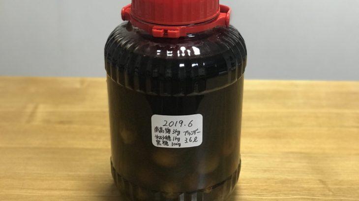 ブランデー紅茶梅酒 【 果実の酒用ブランデーV.O × 南高梅 × 氷砂糖 】 6ヵ月目